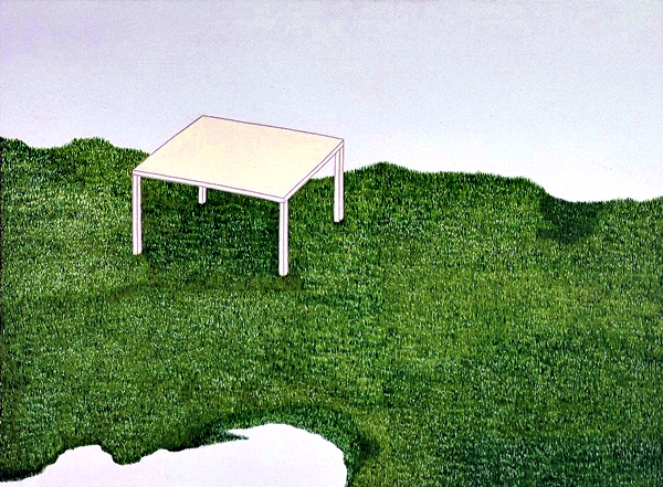 The table in field