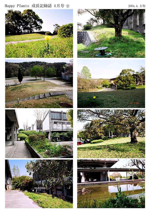 Happy Plants -in the garden- '03/'04